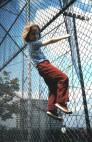 3-29-2008_006-VG on Fence