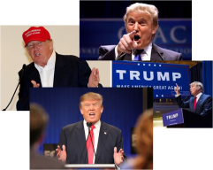 Trump Collage